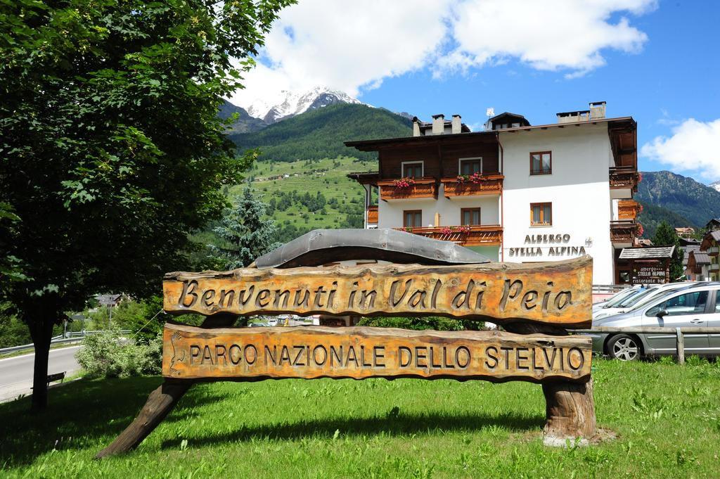 Hotel Stella Alpina Cogolo Di Pejo